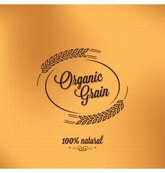 Grain organic vintage design background vector