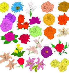 in hand drawn style roses vector eps 10 ill vector