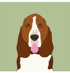 Basset hound dog vector