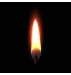 Fire flame isolated on black background vector