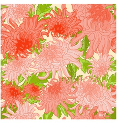 Floral seamless background with chrysanthem vector
