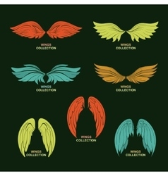 Wing set stylized wings vector