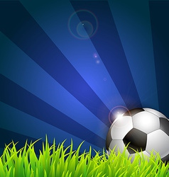 Soccer ball on grass background vector