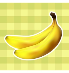 Plaid fabric with bananas vector