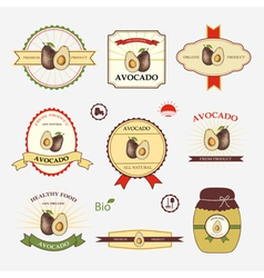 Avocado set of label design vector