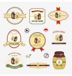 Avocado set of label design vector