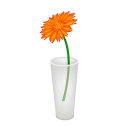A lovely fresh daisy flower in glass vase vector
