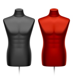 Male tailors dummy mannequin vector