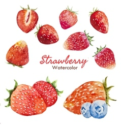 Berry set vector