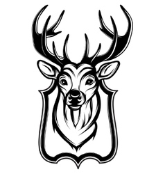A stag head as a trophy vector