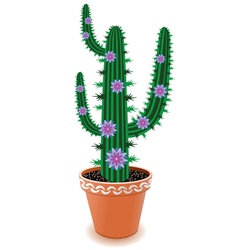 Pot cactus vector