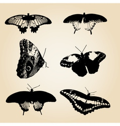 Six types of black butterfly eps10 vector