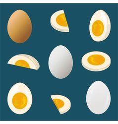 Hard boiled egg vector