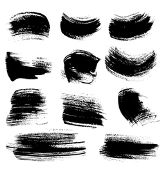 Textured brush strokes drawn a flat brush and ink vector