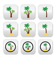 Palm trees exotic holidays on beach colorf vector