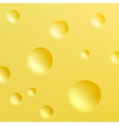 Cheese texture vector
