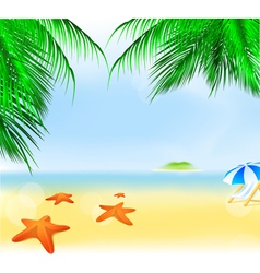 Summer palm beach vector
