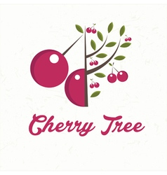 Cherry tree with cherry fruit vector