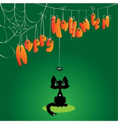 Funny halloween cat and spider vector