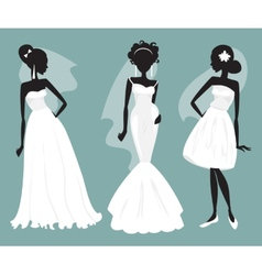 Set brides in various wedding dresses vector