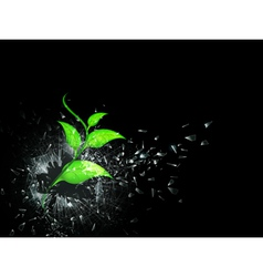 Green sprout in broken glass vector
