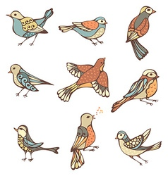 Set of hand-drawn birds vector