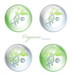 Organic science balls vector