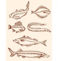 Set of vintage saltwater fish vector