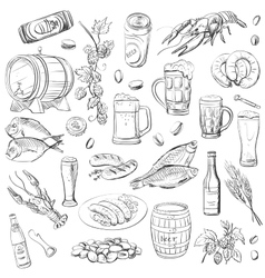Beer hand drawing set of sketches vector