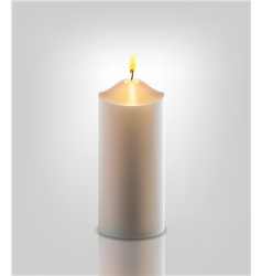 White burning candle vector