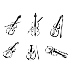 Classical violins instruments vector