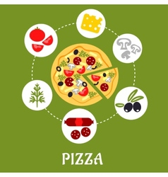 Flat pizza infographic with ingredients vector