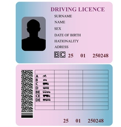 Driving license vector