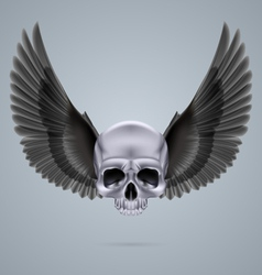 Metal chrome skull with two wings vector