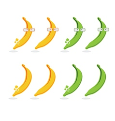 Set of bananas and platanos with glasses vector