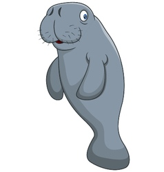 Cute cartoon manatee vector