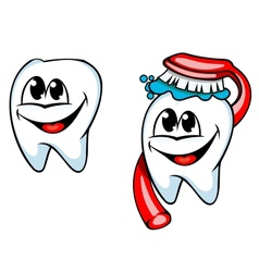 Clean tooth with toothbrush and paste vector