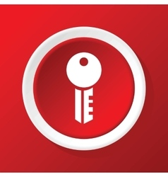 Key icon on red vector