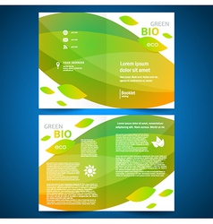 Brochure folder bio eco green leaf nature eco vector