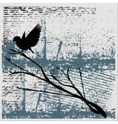 Grunge bird background vector