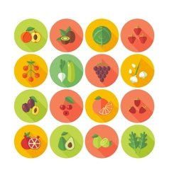 Flat design icons for fruits and vegetables vector