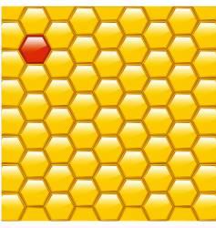 Honeycomb diversity vector