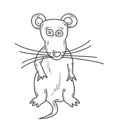 Sketch of the mouse vector