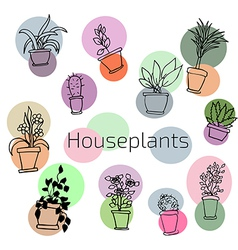 Design set of house plants in colorful circles vector