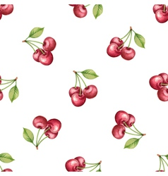 Watercolor pattern of fruit cherry vector