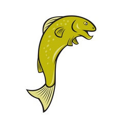 Cartoon spotted trout fish jumping vector