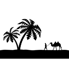 Man with camel in palm trees vector