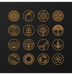 Nature symbols - concept for organic shop vector
