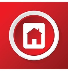 House sign icon on red vector