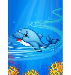 Underwater dolphin vector